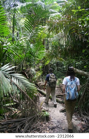 Two travelers jungle-trekking at Bako National Park, Sarawak, Malaysia.