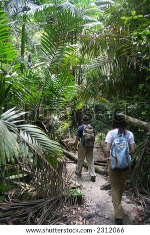Two travelers jungle-trekking at Bako National Park, Sarawak, Malaysia. - stock photo