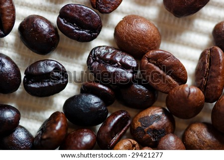 Two types of coffee beans