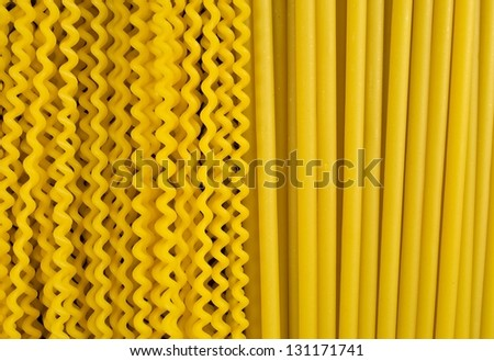 two types of Italian pasta /long pasta