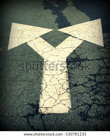 two way pointing arrows painted on a asphalt underground , makes a metaphor for different visions