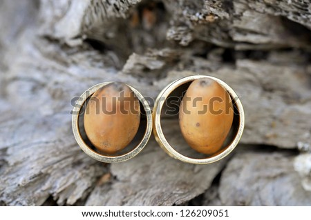 two wedding golden with acorns on wooden surface - stock photo