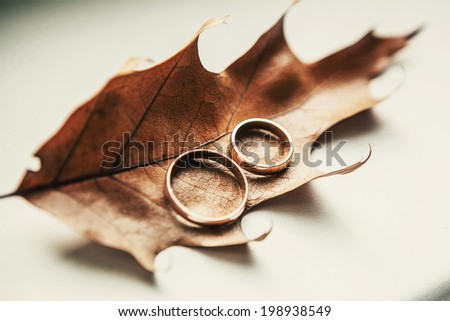 Two wedding-ring on old yellow foilage - stock photo