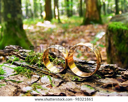 Two wedding rings in infinity sign on a wood. Love concept. - stock photo