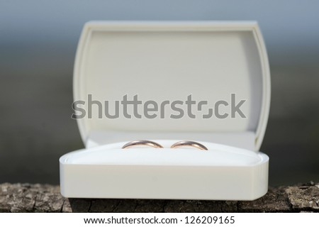 two wedding rings in white gift box - stock photo