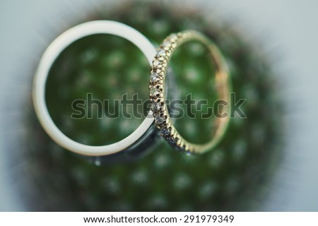 Two wedding rings on a flower close-up