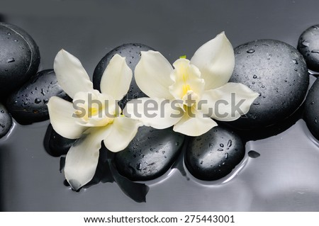 Two white orchid flowers with therapy stones  - stock photo