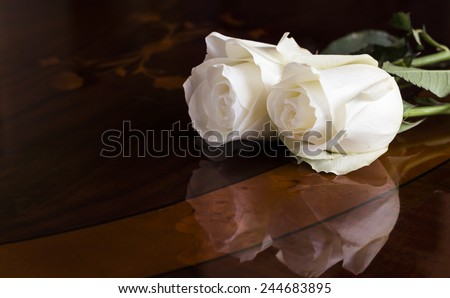 Two white roses on a wooden, dark table. The petals reflects on the surface. - stock photo