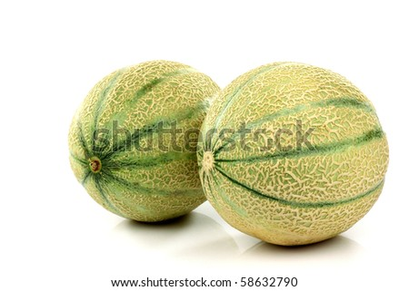two whole cantaloupe melons on a white background - stock photo