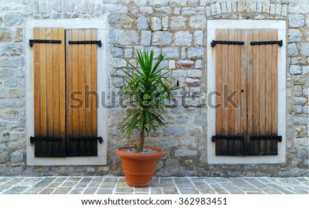 two windows closed by a wooden shutters in a stone wall. plant between them - stock photo