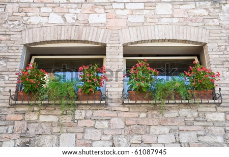 Two windows with flowerpots. - stock photo
