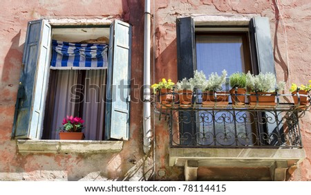 Two windows with flowers - stock photo