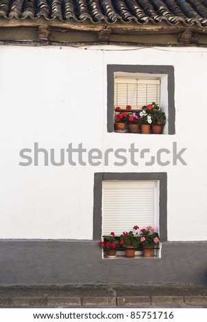 Two windows with flowers in rural village