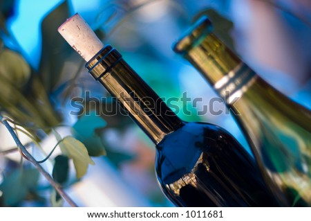 Two wine bottles on blue and green background