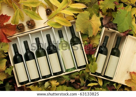 Two wine gift boxes on vine and chestnut leaves. - stock photo