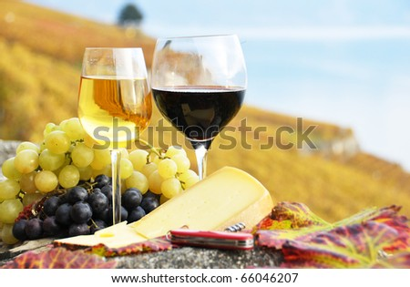 Two wineglasses, cheese and grapes on the terrace of vineyard in Lavaux region, Switzerland - stock photo