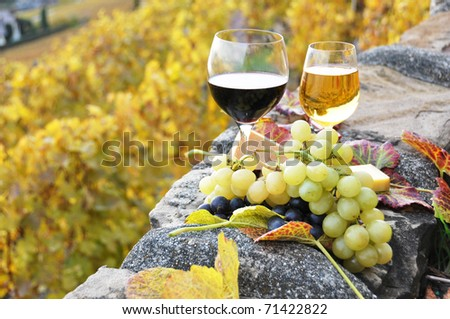 Two wineglasses, cheese and grapes on the terrace of vineyard in Lavaux region, Switzerland