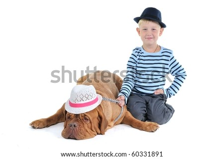 Two With Hats - Huge Dogue De Bordeaux And It's Seven Years Old Smiling Master Isolated On White Background - stock photo