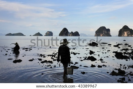 Two women collecting shellfish from sand at low tide in Thailand
