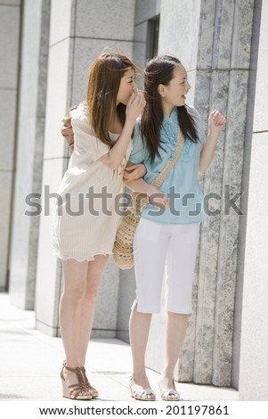 Two women having a window shopping in the city - stock photo