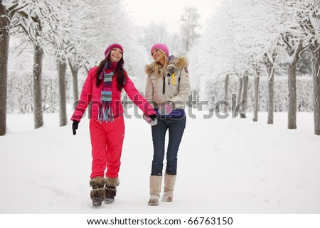 two women walk by winter alley - stock photo