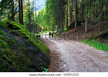 Two women walking tourist track in a mountain forest in Dolomites valley. - stock photo