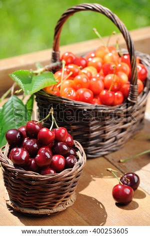 Two wooden baskets of fresh ripe cherries on the wooden table in the garden