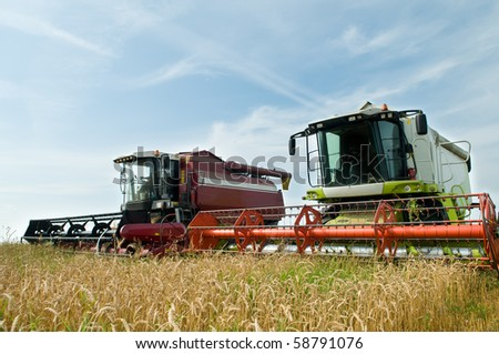 Two working harvesting combines in the summer field of wheat cereals - stock photo