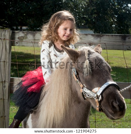 Two Year Old Riding Miniature Horse
