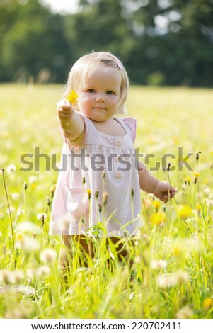Two-years child at dandelion meadow in summer - stock photo