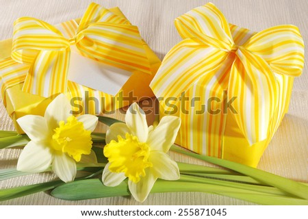two yellow mothers day presents with narcissus and greeting card on tablecloth - stock photo
