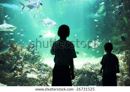 Two young boys enjoy the view at an aquarium. - stock photo
