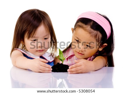 Two young girls examine a small seedling, placing thier hands around it to protect it. - stock photo