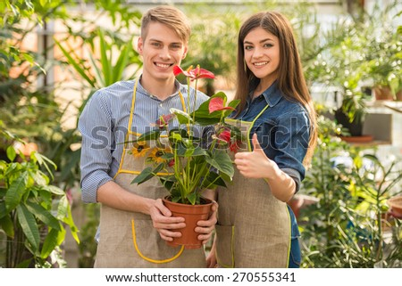 Two young handsome florists working in greenhouse.