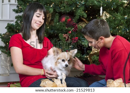 Two young people sitting by a Christmas tree petting their little dog. - stock photo