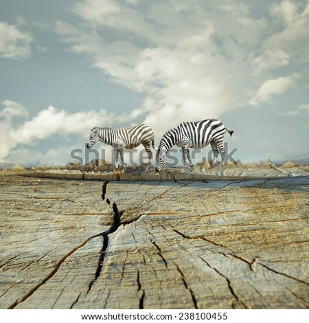 Two zebras in a surreal landscape - stock photo