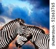 Two Zebras on the sky - stock photo