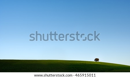 Typical Alentejo landscape (south of Portugal) with his vast spring green plain, deep blue sky and a oak tree on the horizon
