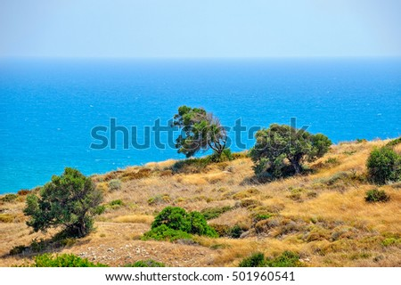 Typical cyprus nature landscape