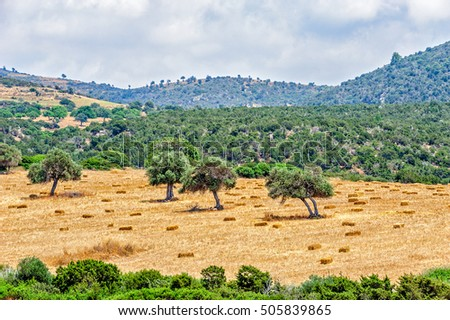 Typical cyprus rural mountains landscape