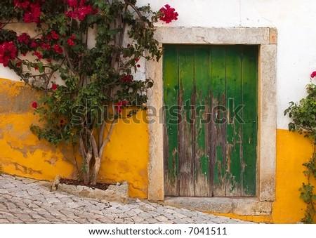 Typical Door - stock photo