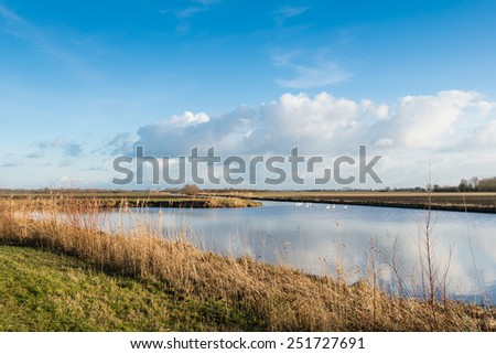 Typical Dutch polder landscape on a sunny day in winter with a blue sky and clouds reflected in the water surface. - stock photo