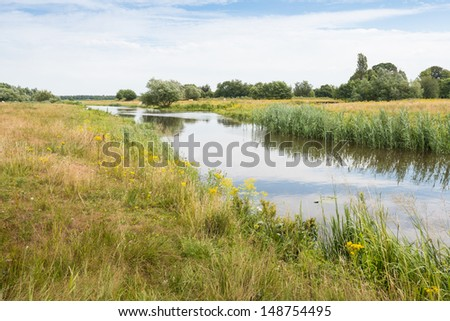 Typical Dutch rural landscape in the summer season. - stock photo