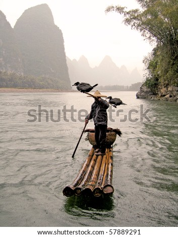 typical fisherman and his cormorants - stock photo