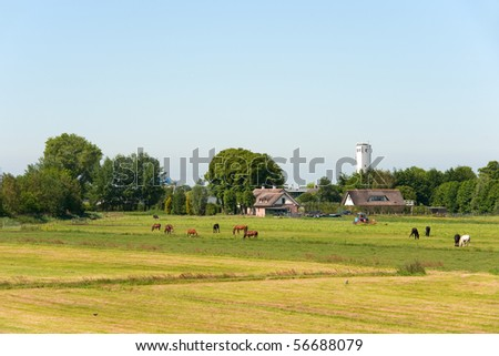 Typical flat Dutch landscape with pastures and farm houses - stock photo