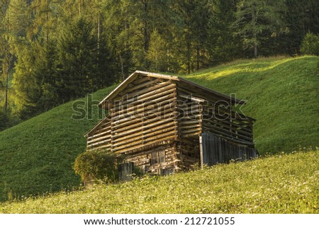 typical hay barn at the mountain in the Alps in summer, Tyrol, Austria, Europe, typisches Heystadel in den Bergen der Alpen im Sommer, Tirol, Oesterreich, Europa - stock photo