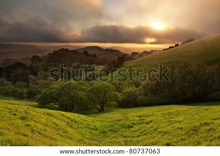 Typical hilly California chaparral meadow at sunset on foggy day - stock photo