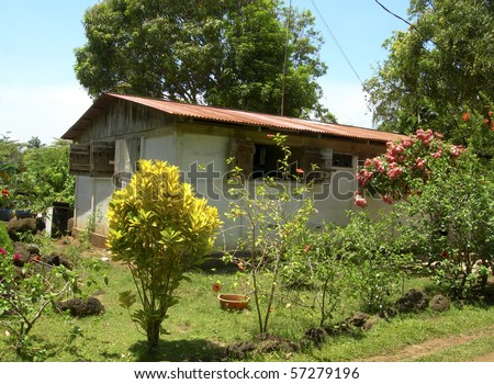 typical house architecture in tropical jungle with flowers big corn island nicaragua central america