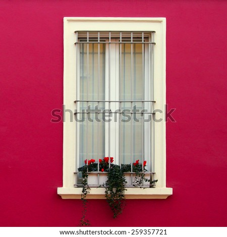Typical Italian windows of colored building - stock photo