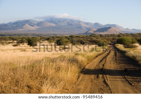 Typical Landscape in Tsavo National Park, Kenya - stock photo